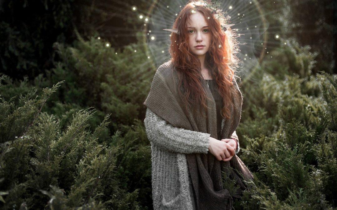 Kdo jsi? III – Elfové